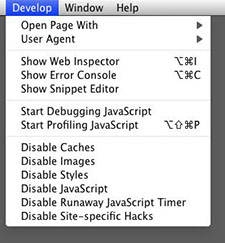 Safari 4 Develop menu
