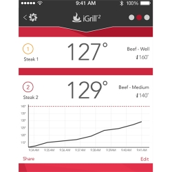 Texas BBQ Technology Remote Thermometer