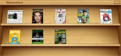Newsstand on an iPad