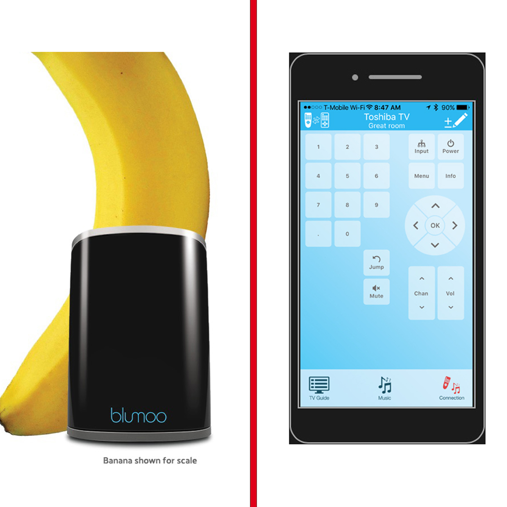 Blumoo infrared Ddevice on left, iOS app on right