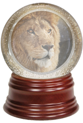 Lion crystal ball