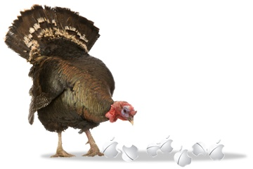 Happy Thanksgiving from The Mac Observer