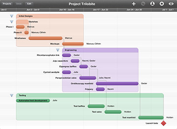 OmniPlan, now available for the iPad