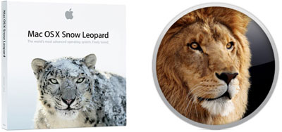 Snow Leopard and Lion