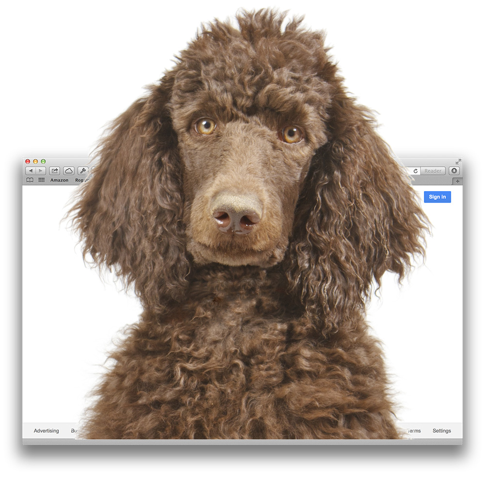 Apple dropping Push notification support to avoid Poodle SSL security flaw