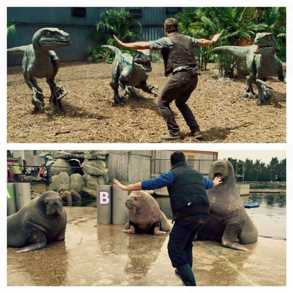 Zoo Keepers get Their Jurassic Park Moves On