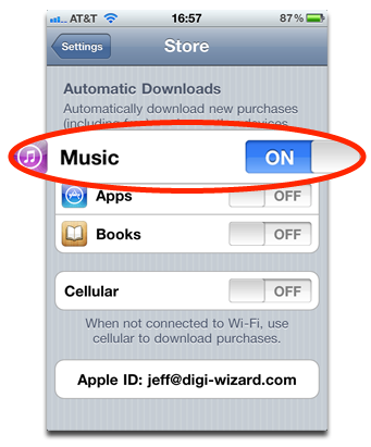 Automatic Downloads Settings