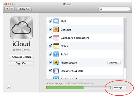 You can choose your online storage plan from iCloud's preferences on your Mac
