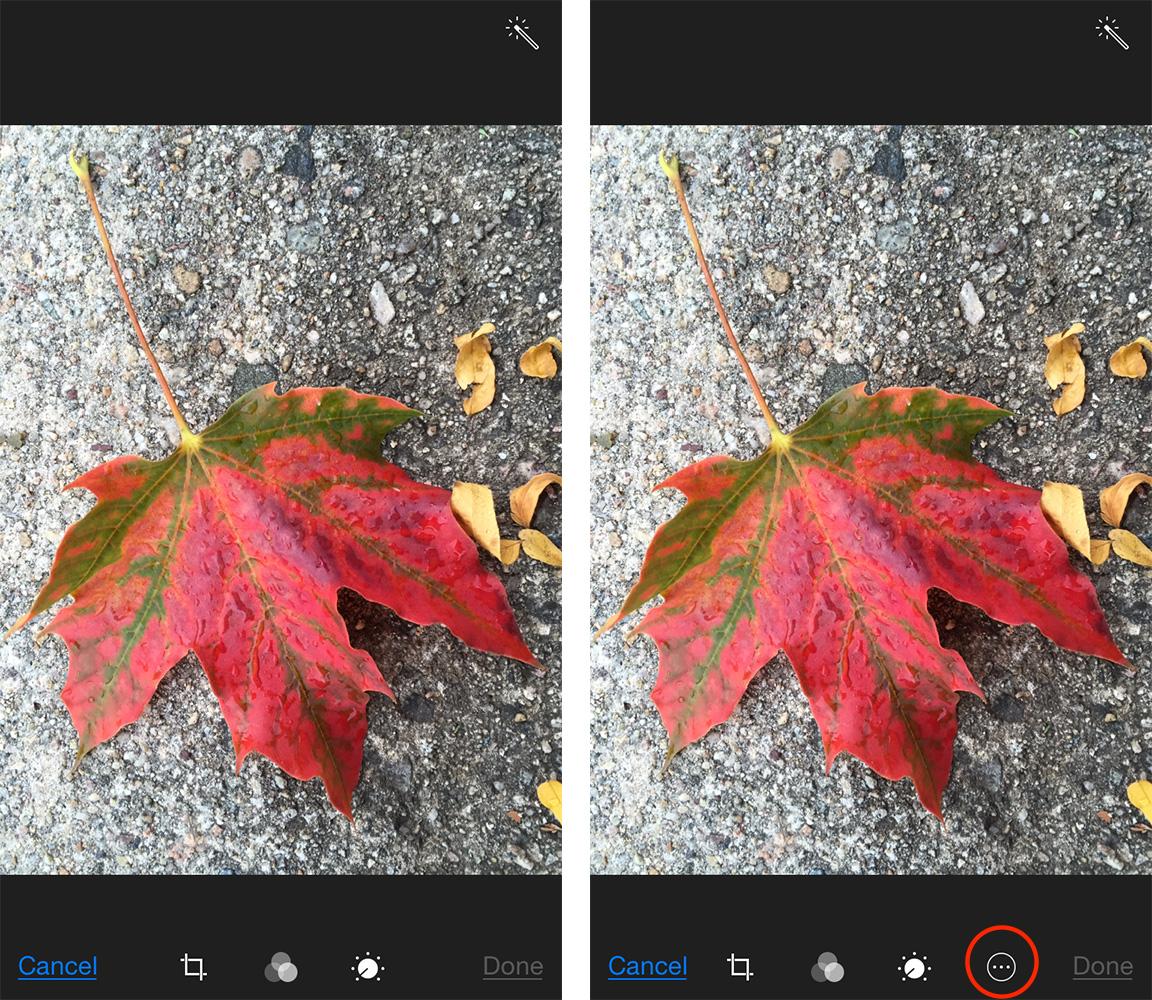 Photos without any Extensions available (left) and with Extensions (right)