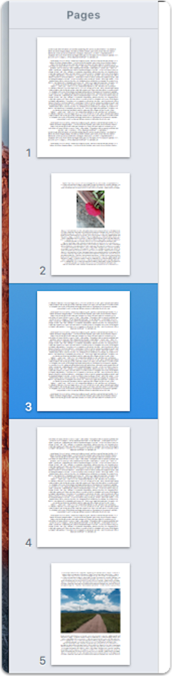 how to delete page break in mac word