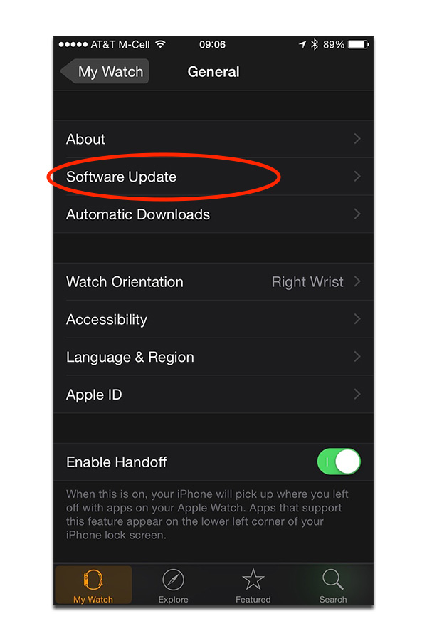 The Software Update option is tucked in the General settings