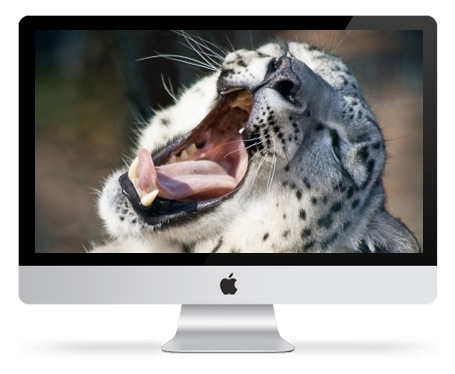 Snow Leopard 10.6 Software Installer Update