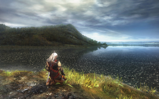 The Witcher for Mac OS X