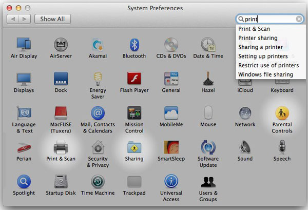The search field in System Preferences.