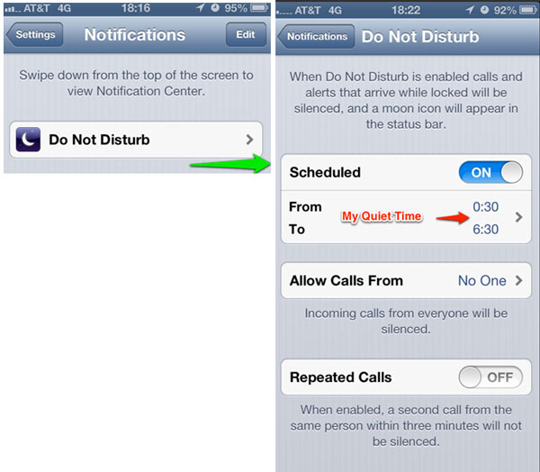 The Notifications Panel leads to additional Do Not Disturb settings.