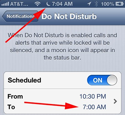 Do Not Disturb 2013 Bug