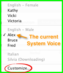 The pop-up menu showing the installed voices and the currently selected System Voice.