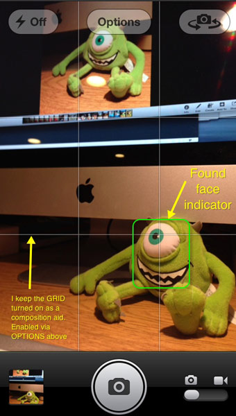 An iPhone screen capture showing how the Facial Recognition feature works.