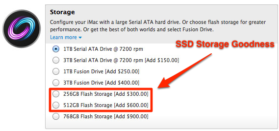 SSD Storage Options