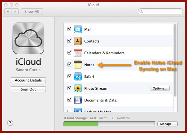 The iCloud Preferences Pane in OS X.