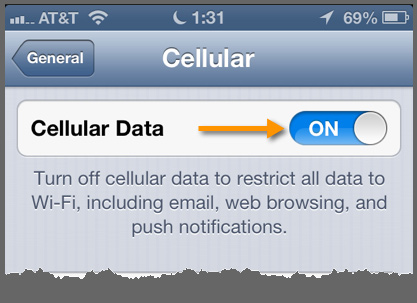 The Cellular settings panel and the Cellular Data