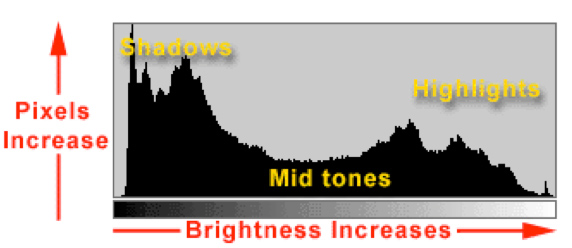 A typical image histogram.