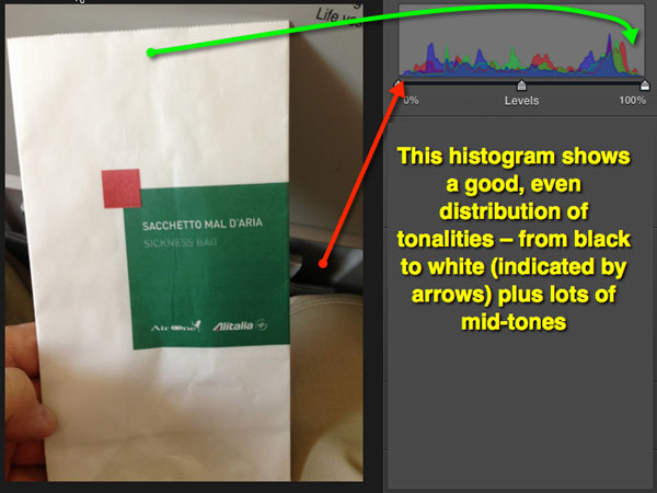 An image open in the Edit module of iPhoto and showing the histogram.