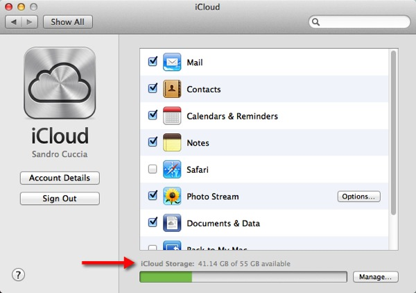 The iCloud Preferences panel in OS X.