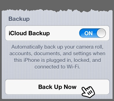 The bottom portion of the iCloud Storage & Backup Preferences panel with the Back Up Now button highlighted.