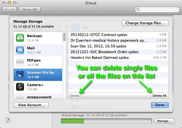 The iCloud Preferences panel in OS X with the Manage Storage pane showing for a particular app.