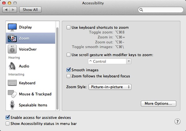 The Accessibility Preference panel with default settings.