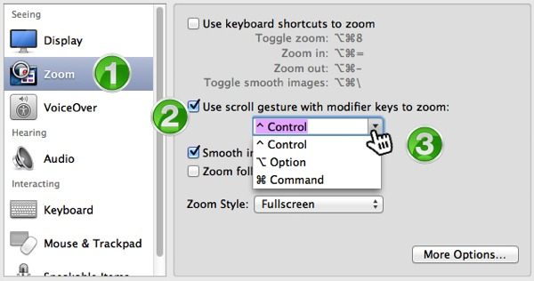Detail from the Accessibility Preference panel.