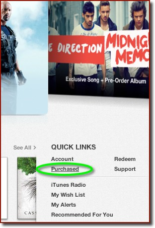 A detail showing the Quick Links section of the iTunes Store Home page