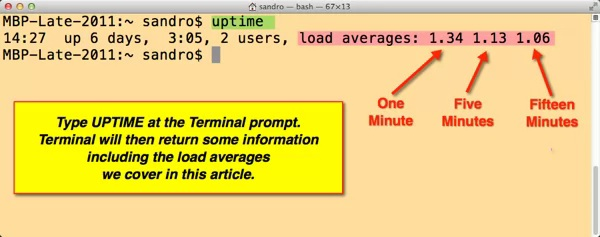 The Terminal window and the uptime command with results