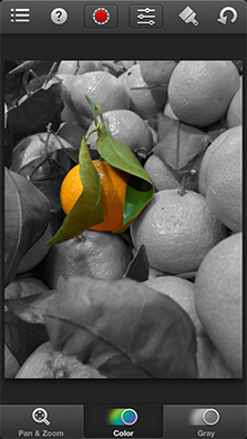 Selectively show colors in your photos with Color Splash