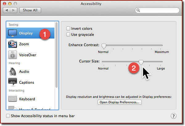 The Accessibility panel in Mavericks