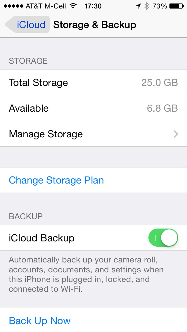 iCloud Storage and Backup preferences on iOS
