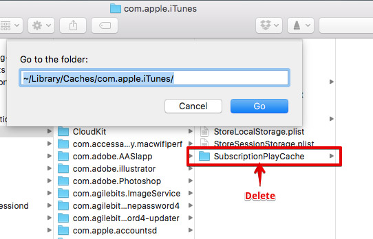 Finder window with path to SubscriptionPlayCache folder.