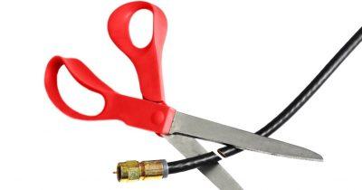 Curd Cutting