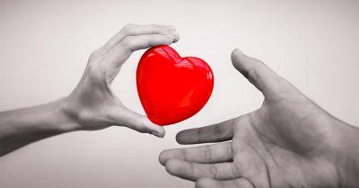 organ donor heart