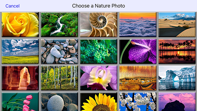 Or use one of Bill Atkinson's amazing nature photos...