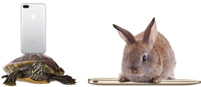 The Tortoise vs. the Hare