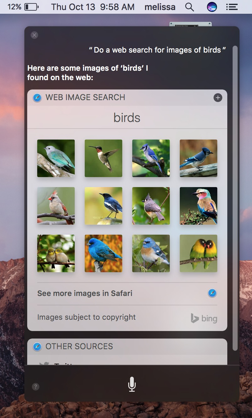 macOS Sierra Siri search for birds