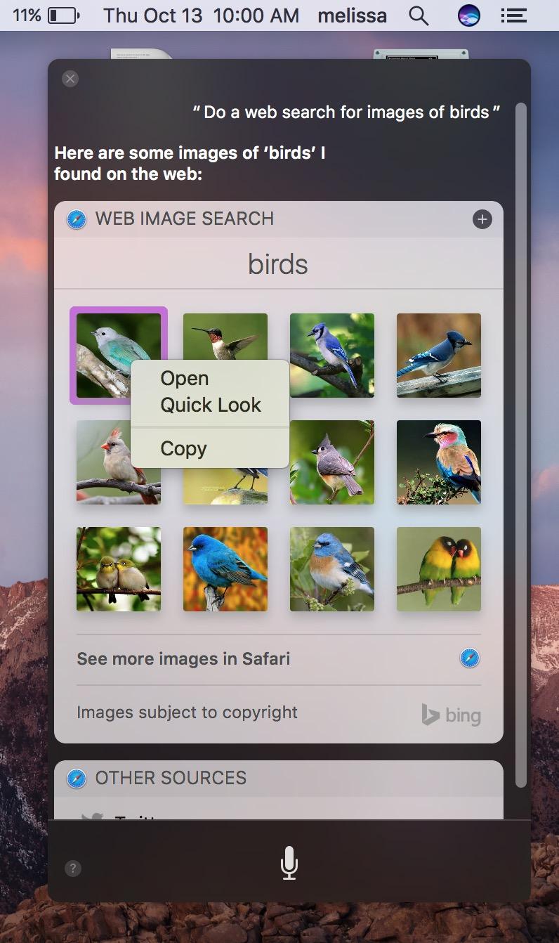 macOS Sierra Siri Contextual Menu