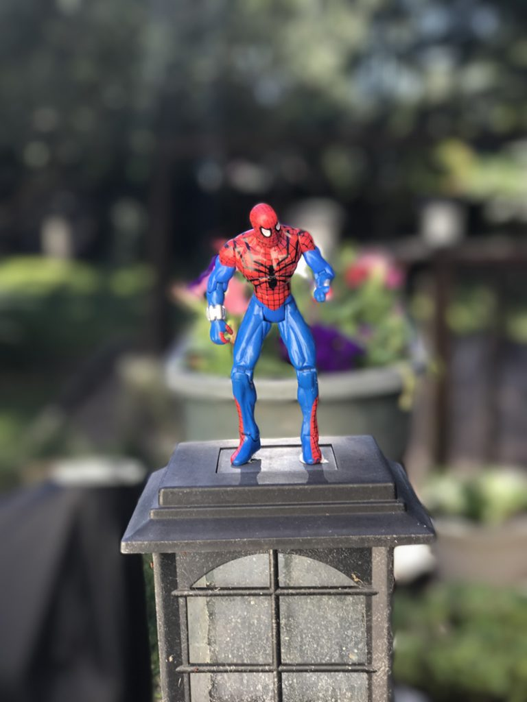 The photo as shot in Portrait mode.