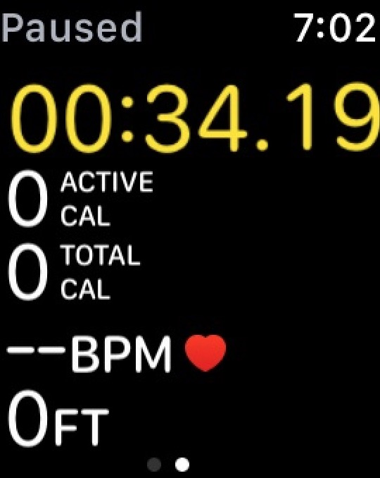Apple Watch Workout app showing multiple metrics