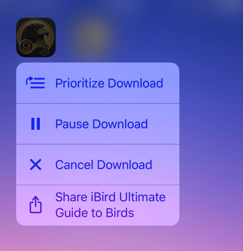 Prioritize option when downloading app updates in iOS 10