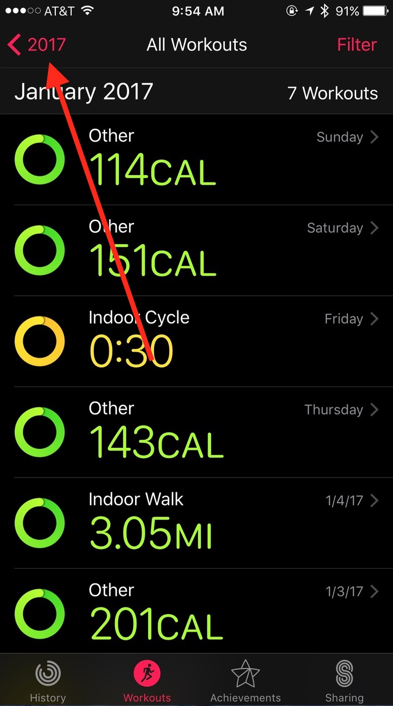Year Button in iOS Activity app Workouts view
