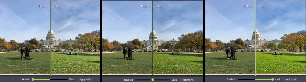 Photolemur's only slider control set to 100% Realistic (left), Default (middle) and 100% Vivid (right).