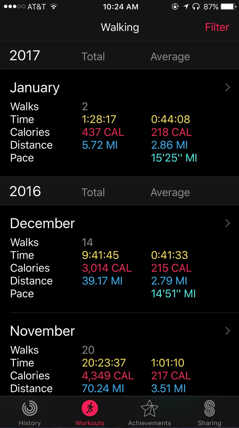 iOS Activity app Walking details by month